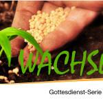 WACHSEN – 1 – geistliches Wachstum